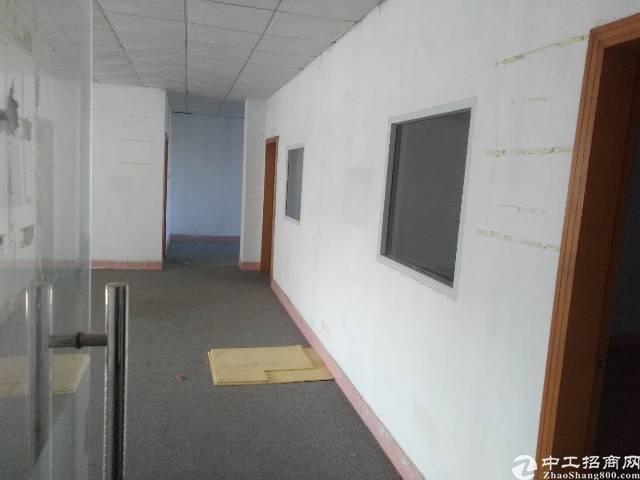 松岗洪桥头新出楼上900㎡带精装修车间办公室-图3