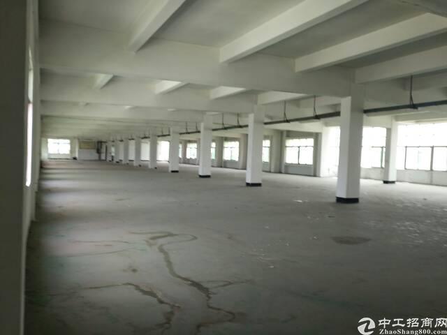 沙田镇进港南路附近原房东厂房出租。