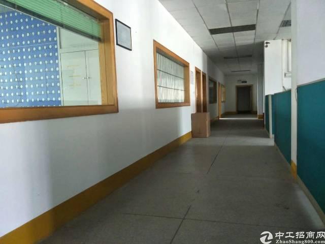 公明松柏路边上新出2楼1200平米带装修办公室前台厂房出租