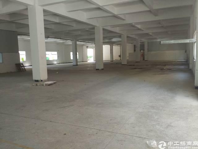 谢岗镇一楼标准厂房400㎡低价出租