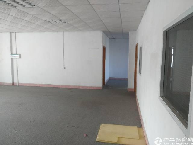 松岗洪桥头新出楼上900㎡带精装修车间办公室-图5