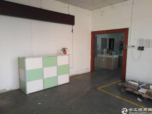 观澜福民一楼1000平标准厂房出租-图5