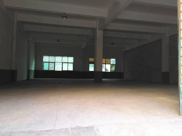 观澜福民一楼480平标准厂房出租-图2