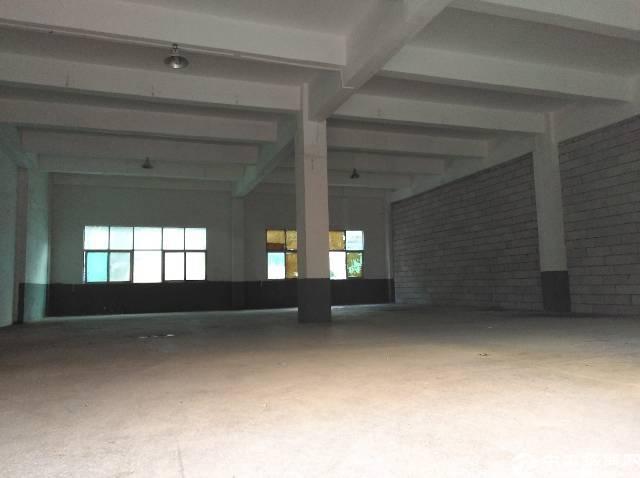 观澜福民一楼480平标准厂房出租-图3