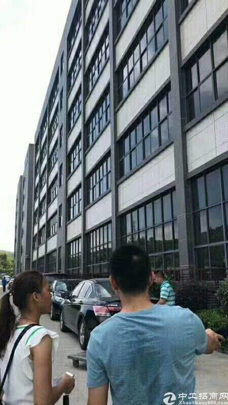 东莞市凤岗镇帮兄弟厂房出租带牛角可装行车