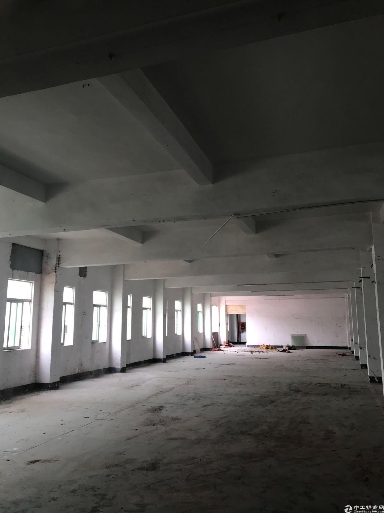 坪山华旭商务中心厂房,仓库出租