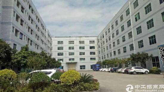 惠阳新圩原房东厂房二楼1600平方招租-图3
