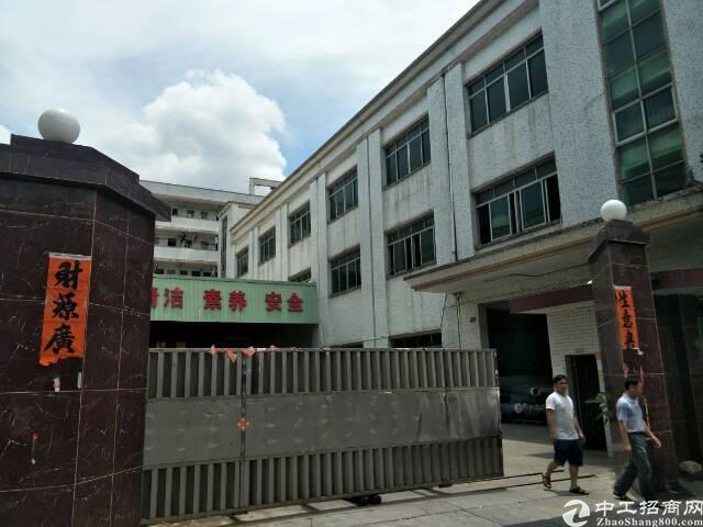 公明李松浪1-3层4500平米独院厂房出租
