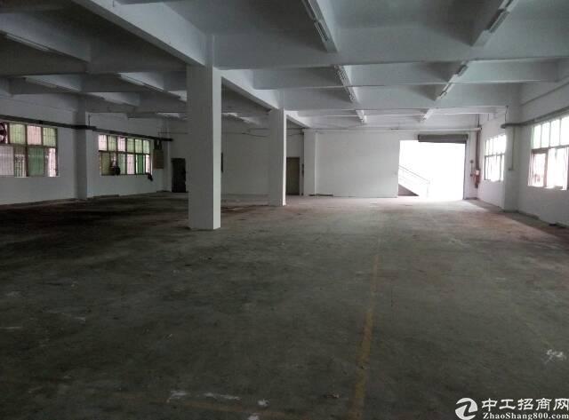 南城标准楼房一楼仓库