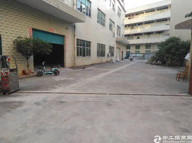 观澜福民一楼480平标准厂房出租