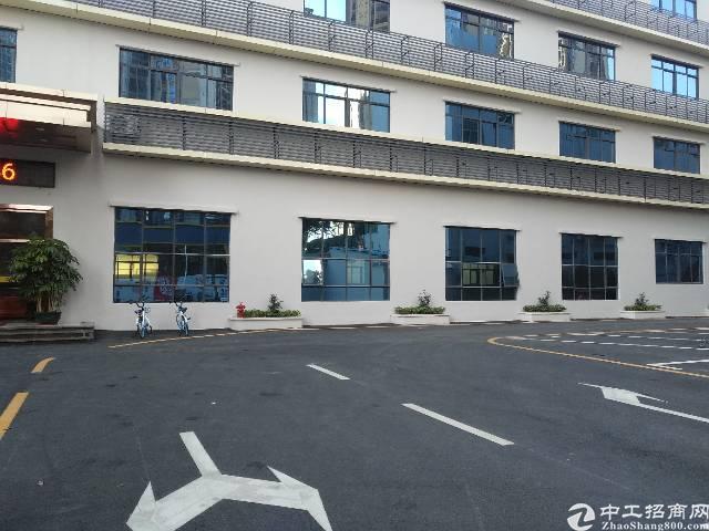 松岗沙浦围新出楼上600平方带装修带办公室无转让费-图5