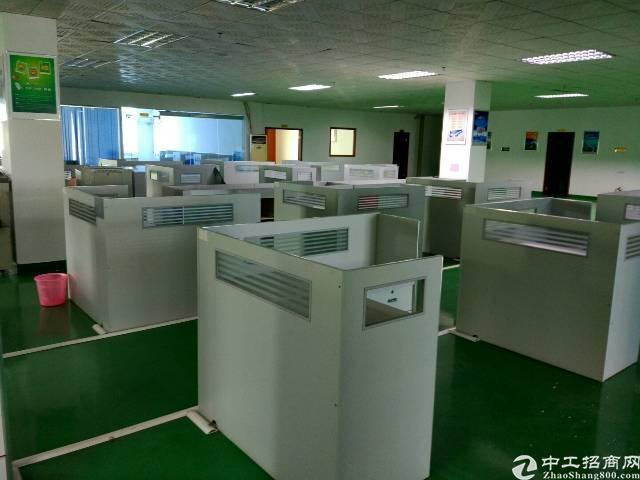 松岗沙浦围新出楼上600平方带装修带办公室无转让费-图4