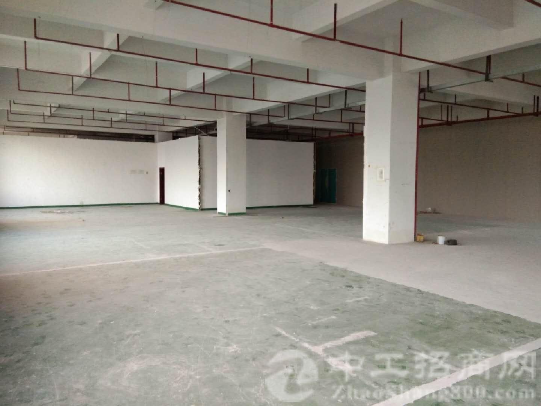 观澜牛湖三楼1200平米带装修厂房出租-图4