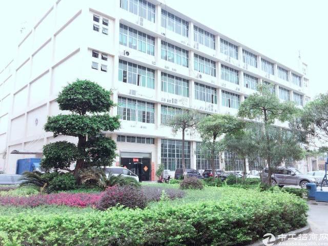 观澜新田新丰工业区原房东厂房三楼1520平方带精装修无转让费