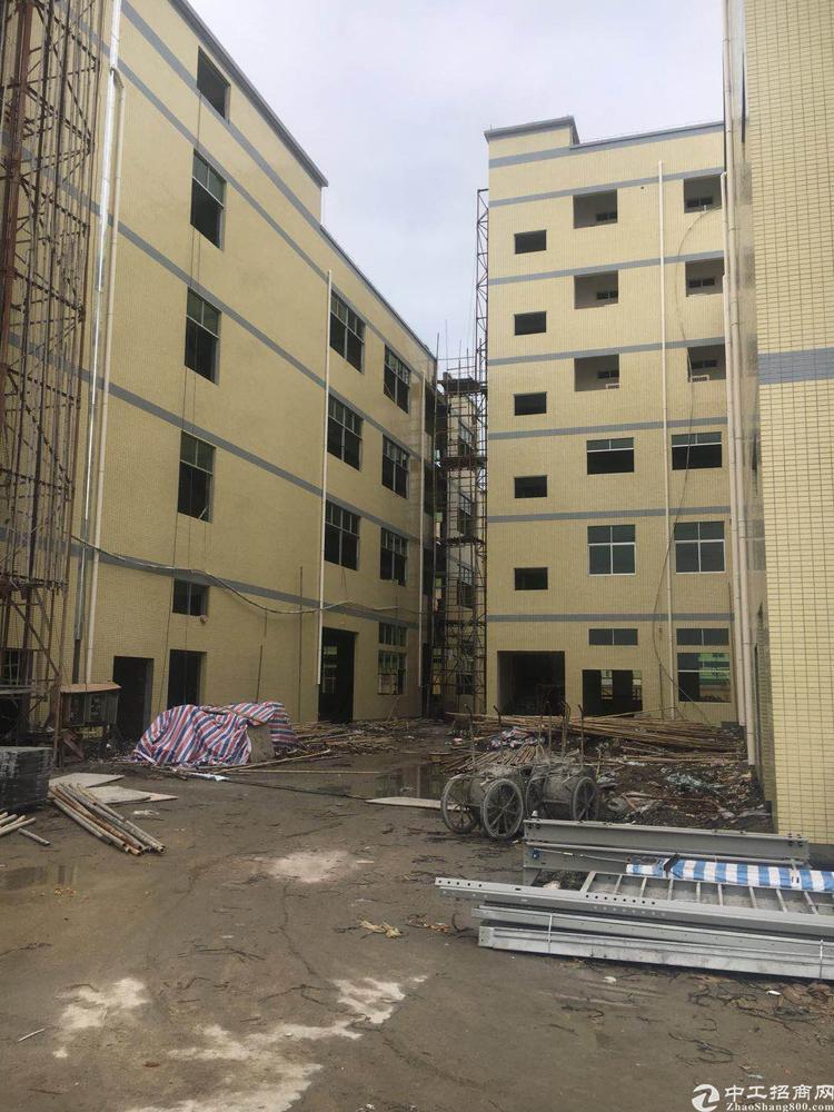 石排新建厂房2万1平方可整租可分租 厂房形象好空地大