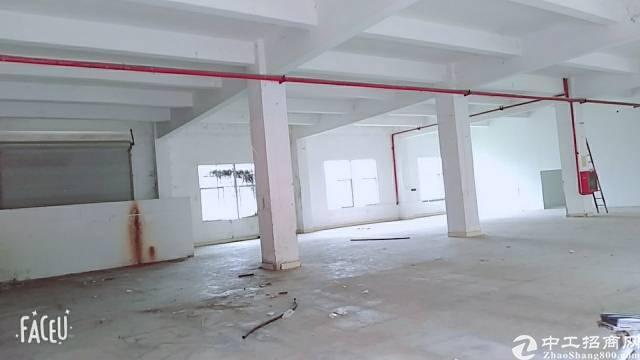 深圳坪山坑梓工业区楼上厂房出租900平-图5
