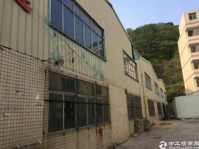 谢岗厂房单一层滴水8米高钢构5500平米,宿舍1000平米,