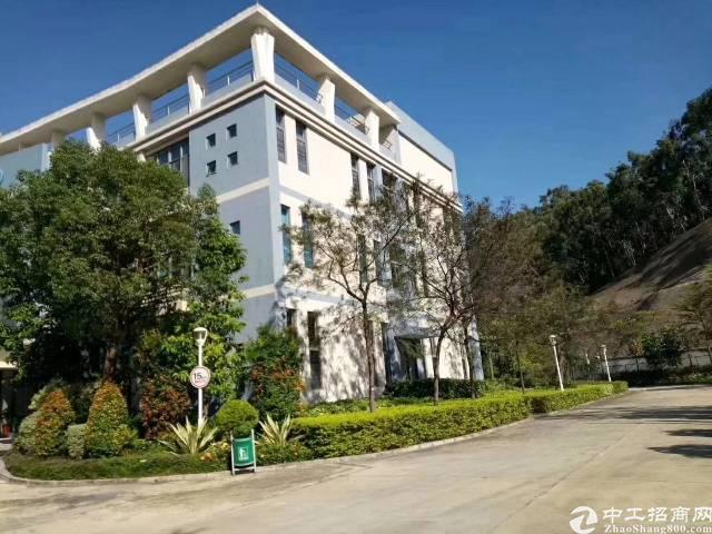 深圳上市公司全新厂房5000平方1—4层实际面积出租,有红本-图2