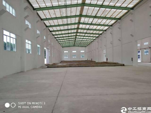 清溪全新钢构4600㎡,大小分租-图4