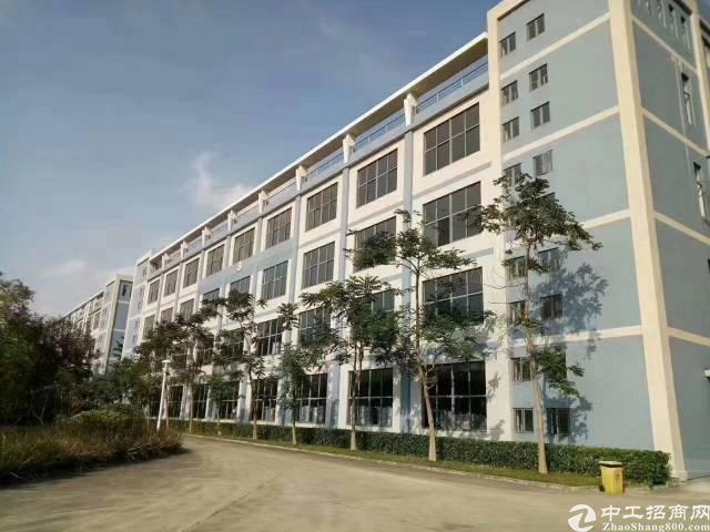 深圳上市公司全新厂房5000平方1—4层实际面积出租,有红本