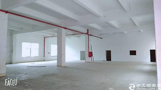 深圳坪山坑梓工业区楼上厂房出租900平-图3
