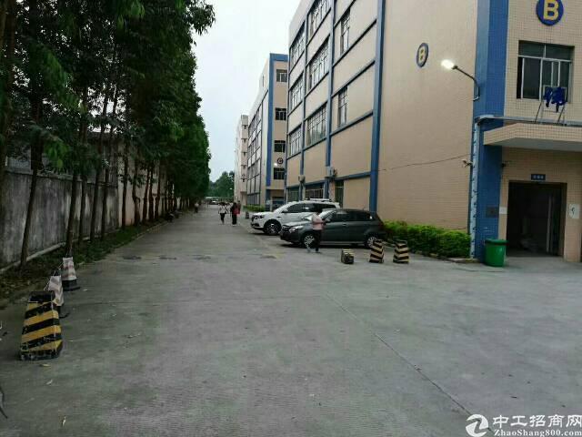 新塘镇花园式超靓独院厂房