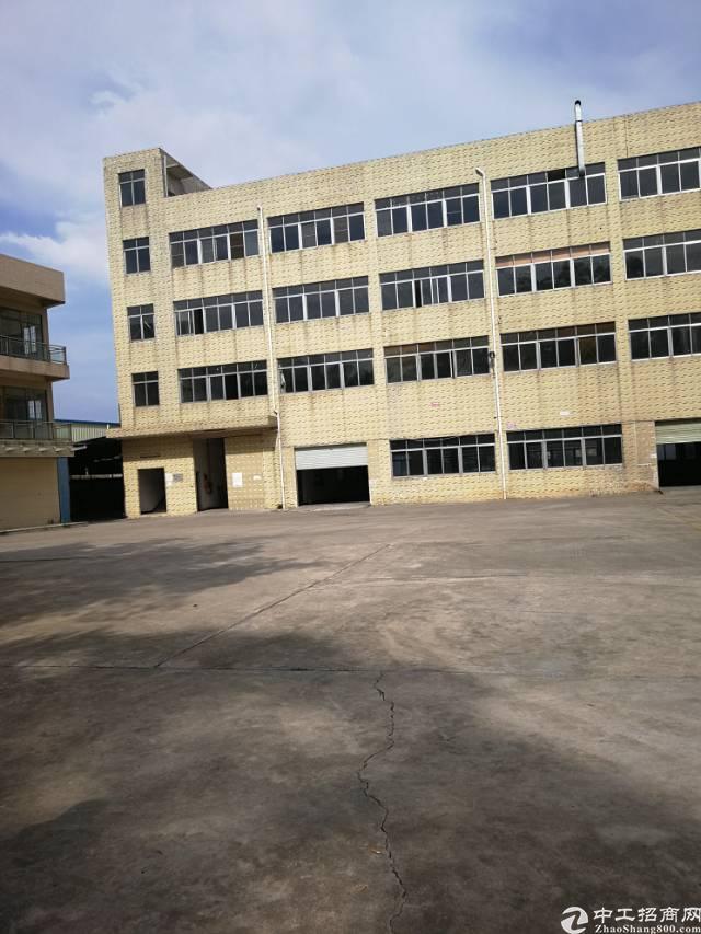 常平镇标准厂房约13500平方出租