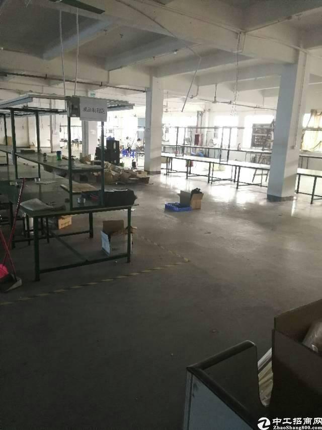 清溪现成办公室加流水线招租-图2
