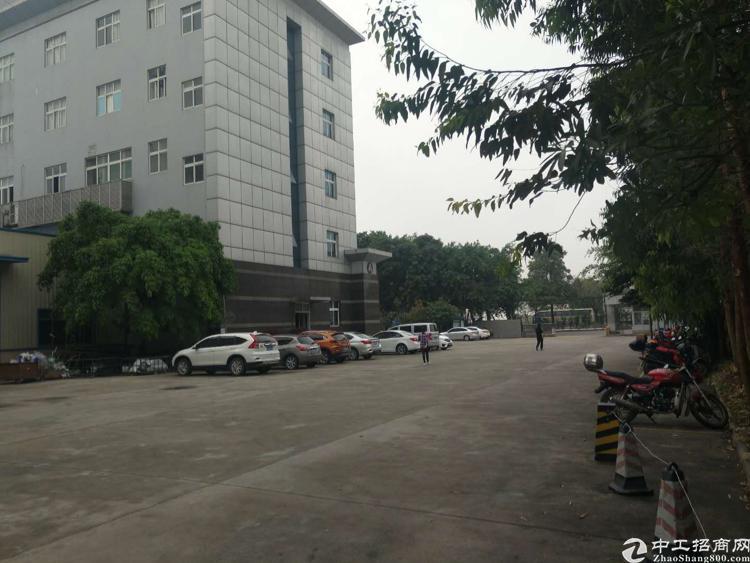 新塘镇荔新路边标准独院厂房