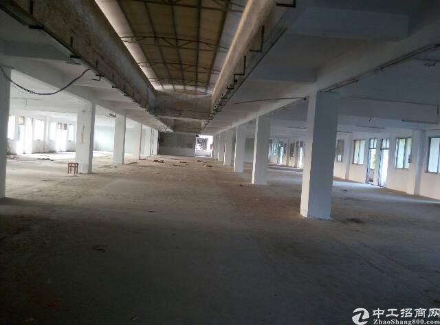 东城牛山厂房