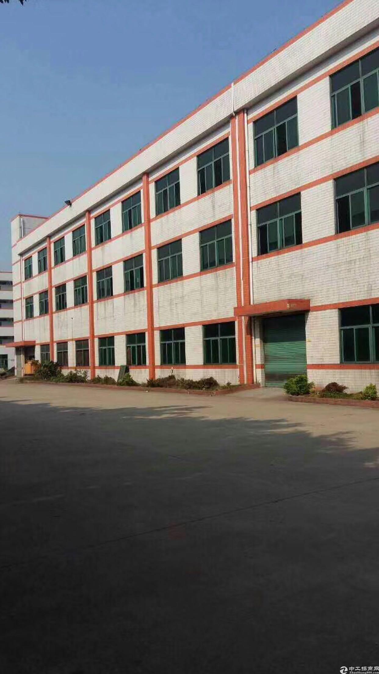 高埗镇标准一楼厂房1200平电按需租金15