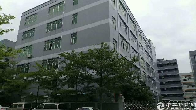 新桥芙蓉工业区独门独院厂房出租 1厂房1-5层11500