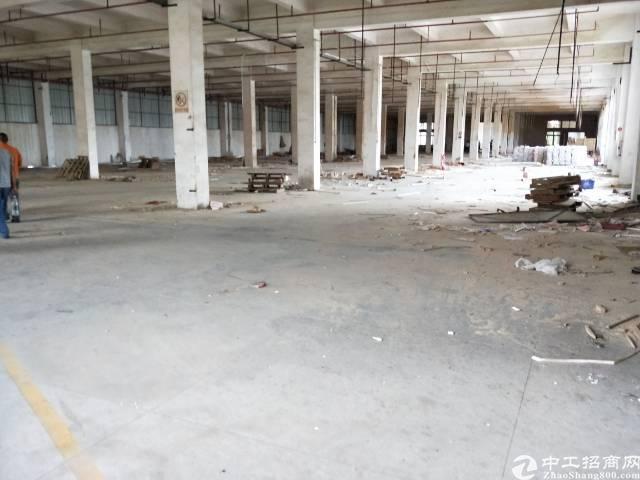 万江新出独院厂房,一至二楼,1300平方