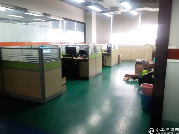 油松业主直招550平标准厂房出租,带拉线,有办公室