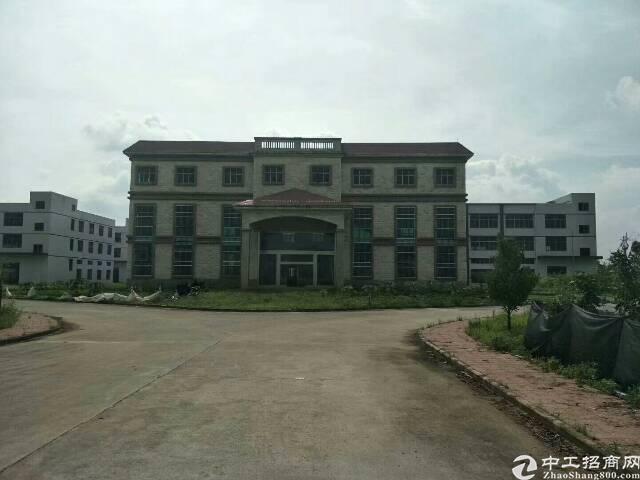 惠州全新标准厂房80000平原房东低价出租