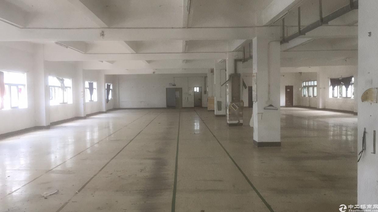 深圳横岗西坑1200平