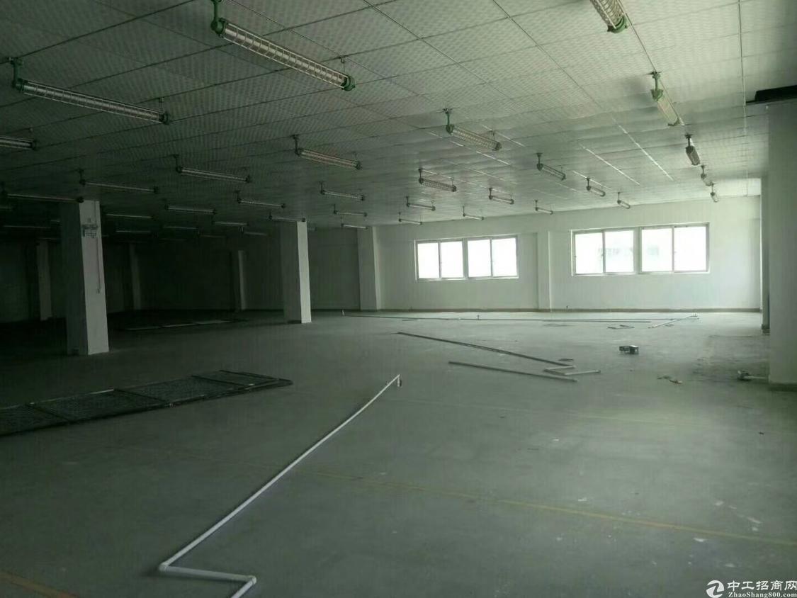 石岩龙大高速出口新出楼上2760平米带装修厂房招租