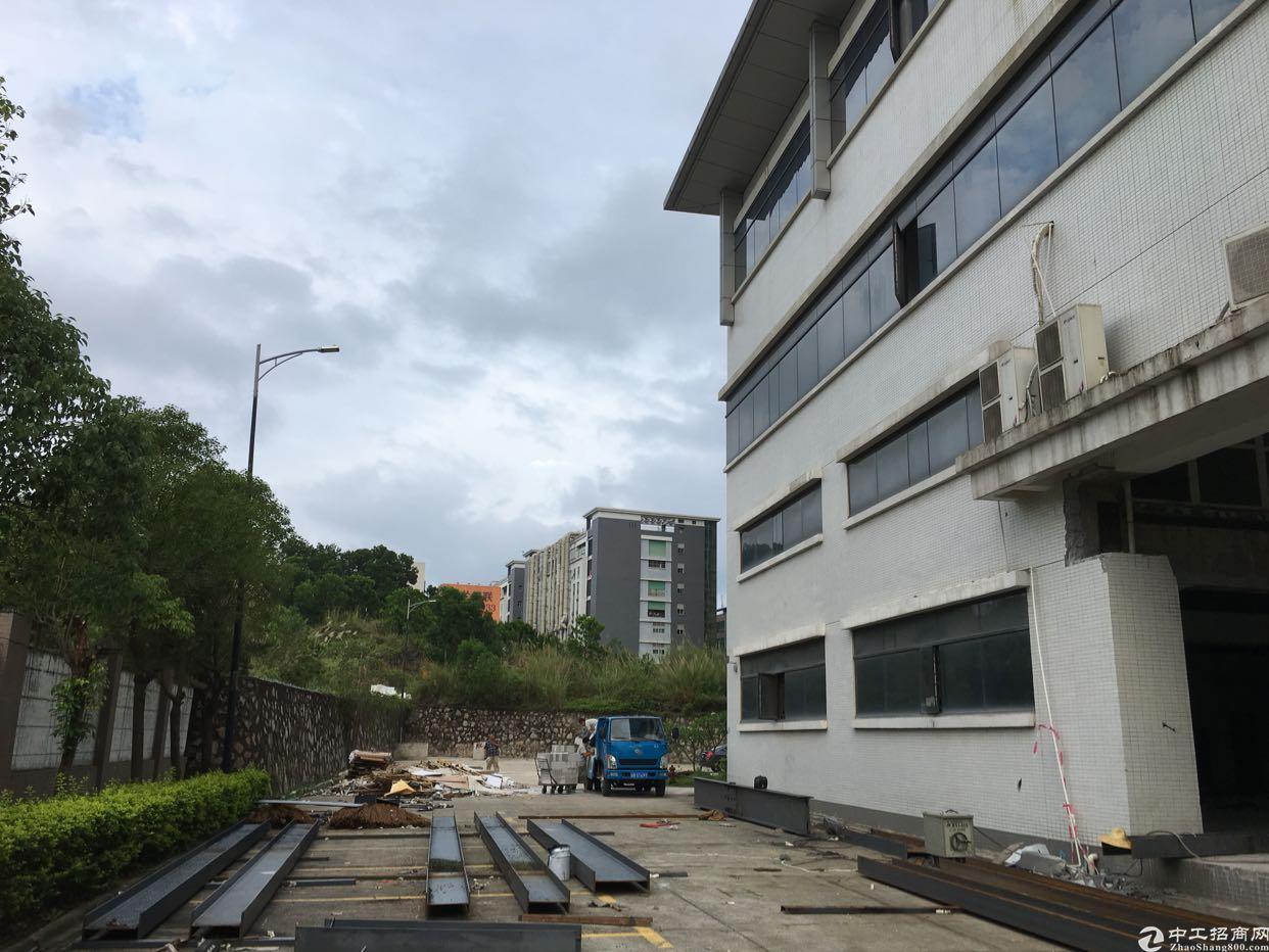 坂田吉华路边上独栋厂房1-4层10000平方可分租低价出租