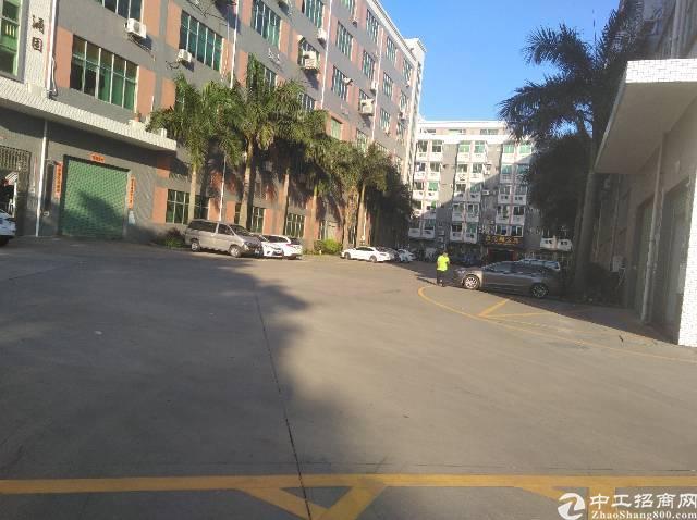 龙华大浪汽车站后新出450㎡标准厂房,大型成熟工业区!!