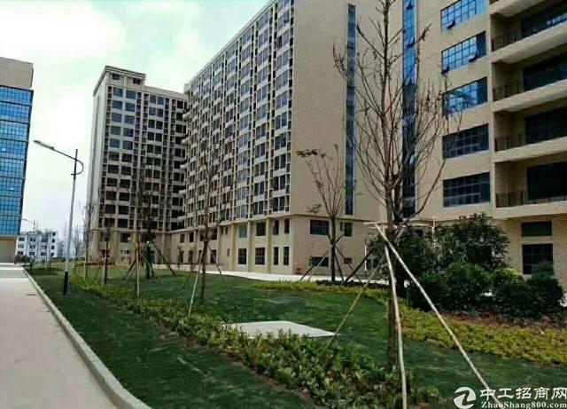 凤岗红本双证齐全厂房单层2200(可分租)