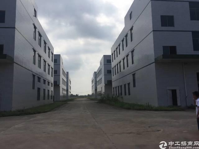 惠州博罗原房东红本厂房90000平方招租!可分租