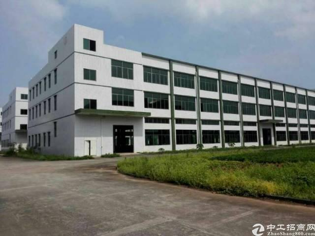 茶山大工业区原房东独院标准厂房8800平米