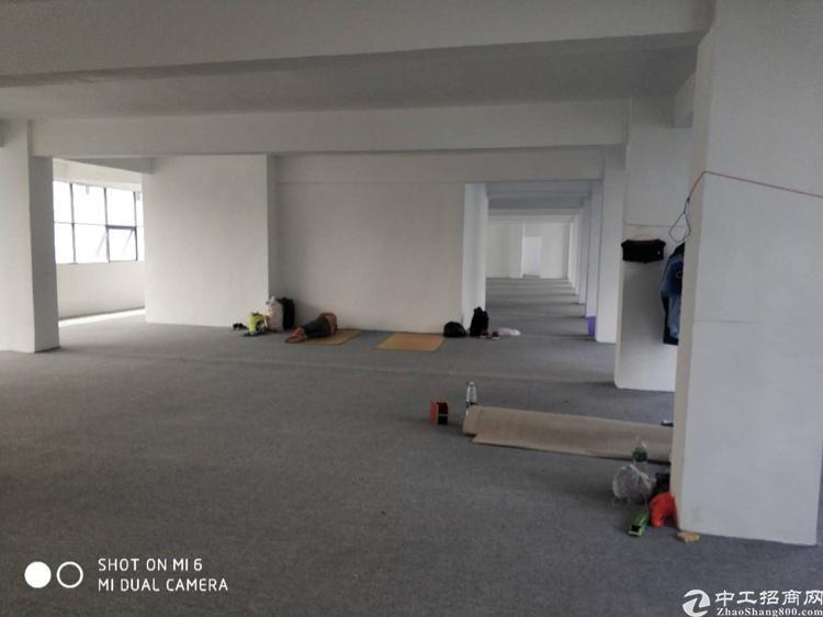 福永凤凰山脚楼上拎包入驻办公室300平-800平