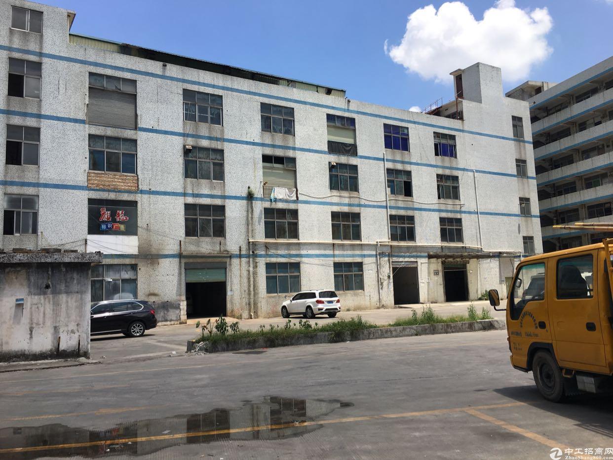 坂田华为过新天下附近一楼300平方适合物流仓库低价出租