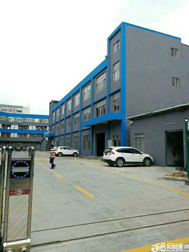 平湖华南城独门独院1650平方标准厂房出租