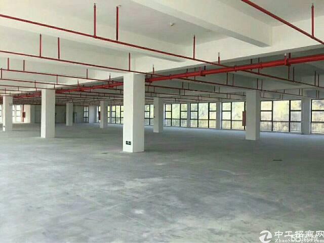 平湖凤凰大道独门独院5000平方标准厂房出租