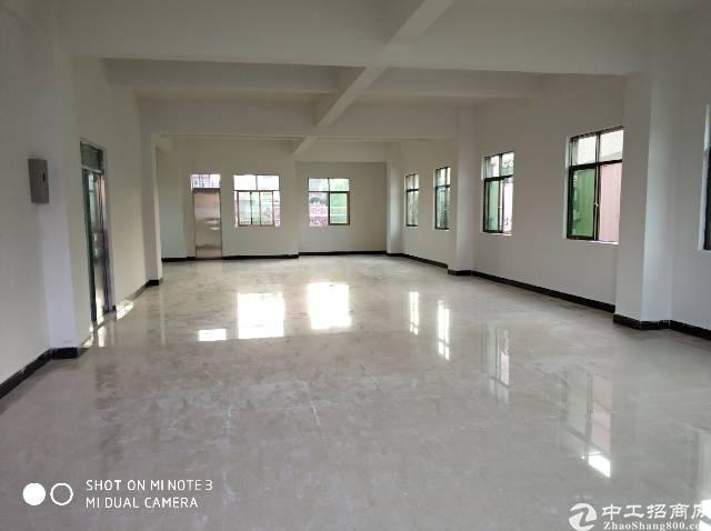 常平新出独栋厂房2800平。价格美丽环境良好