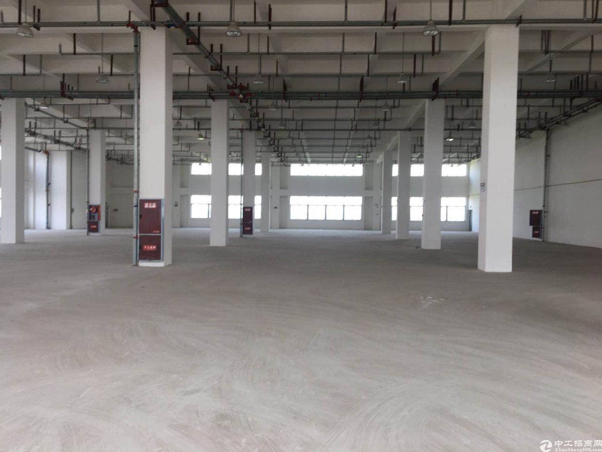 崇州工业园1000平厂房出租-图3