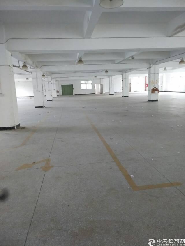 横岗地铁口13000平方独院出租-图3