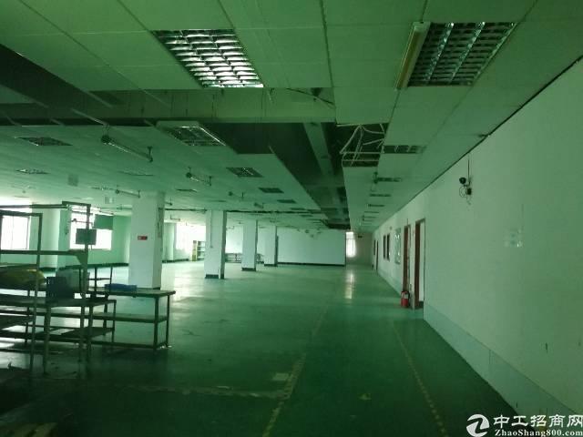 龙华汽车站后面新出原房东优质厂房3楼1600平-图2